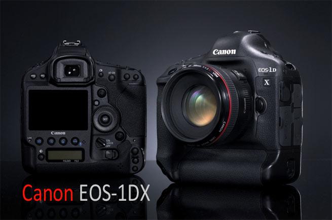 Canon-1DX-web